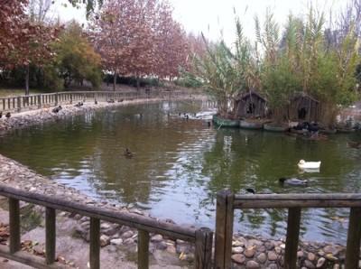 Parque del prado de la casa de humanes - La casa del parque ...